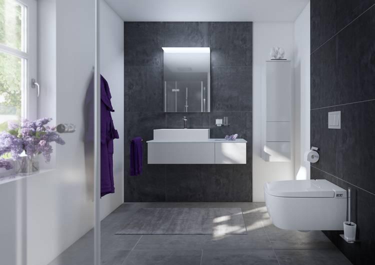 3 Tipps Gute Grunde Fur Ein Dusch Wc Haustec