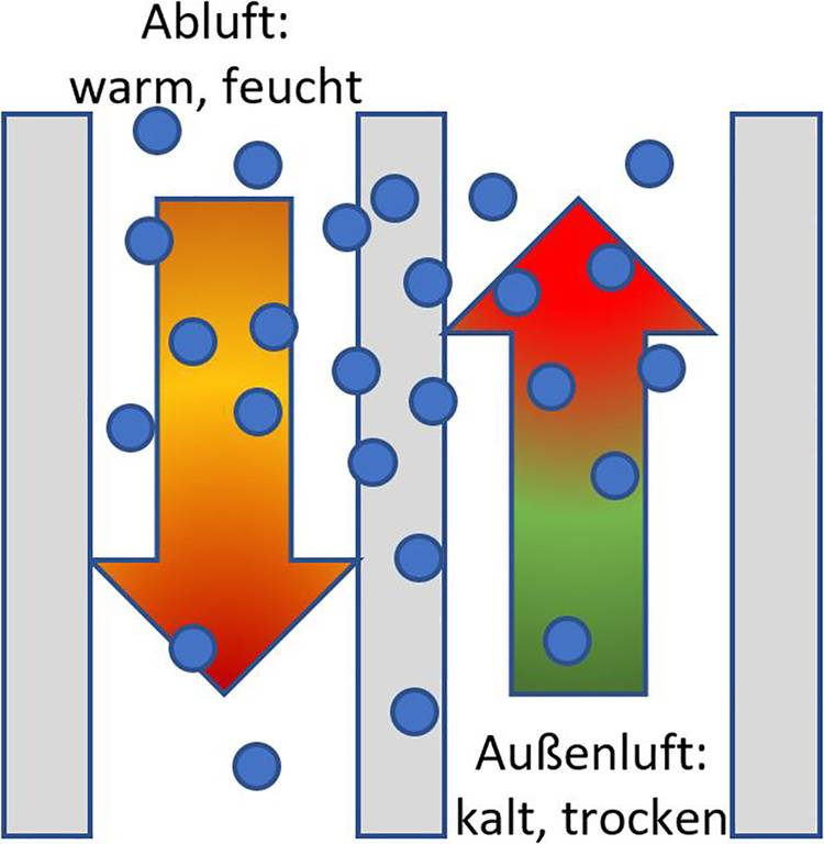 Funktionsschema eines Membran-Wärmeübertragers.