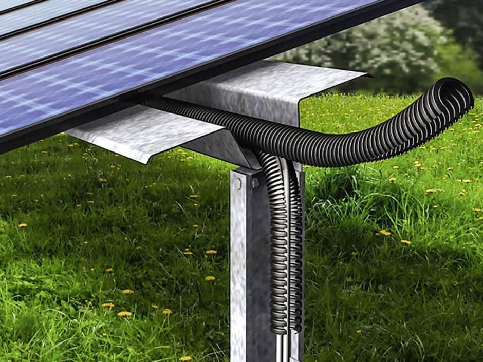 So sch tzen sie photovoltaik anlagen gegen tierfra haustec for Fenster gegen einbruch schutzen