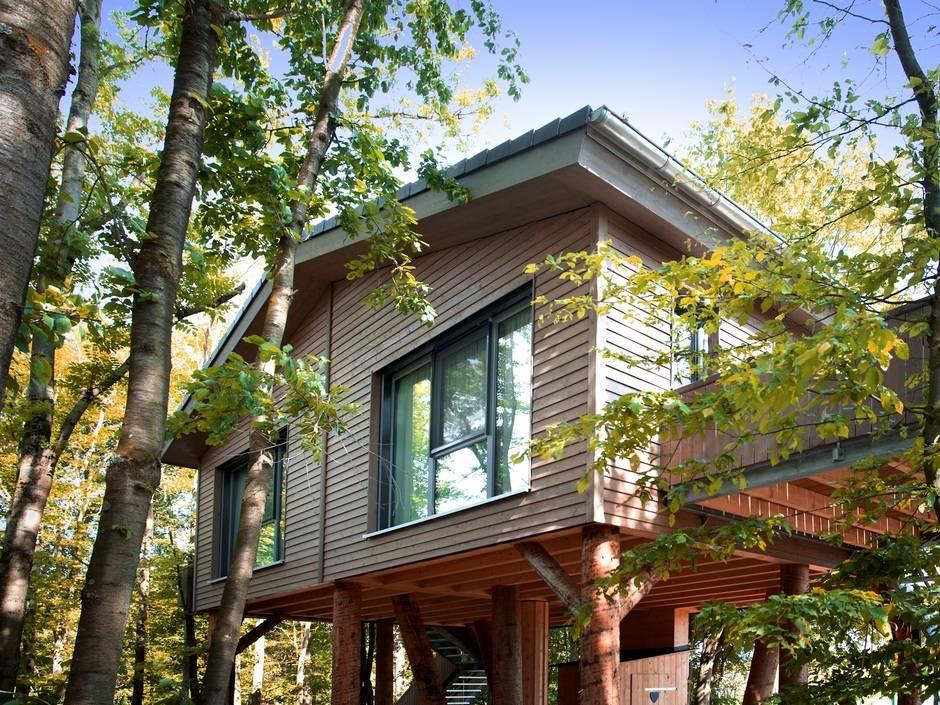 Kneer-Südfenster: Panoramafenster für BaumChalets | Haustec